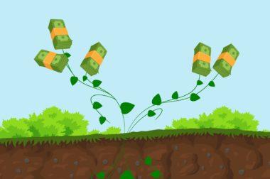 Jak działa konto oszczędnościowe? Wyjaśniamy